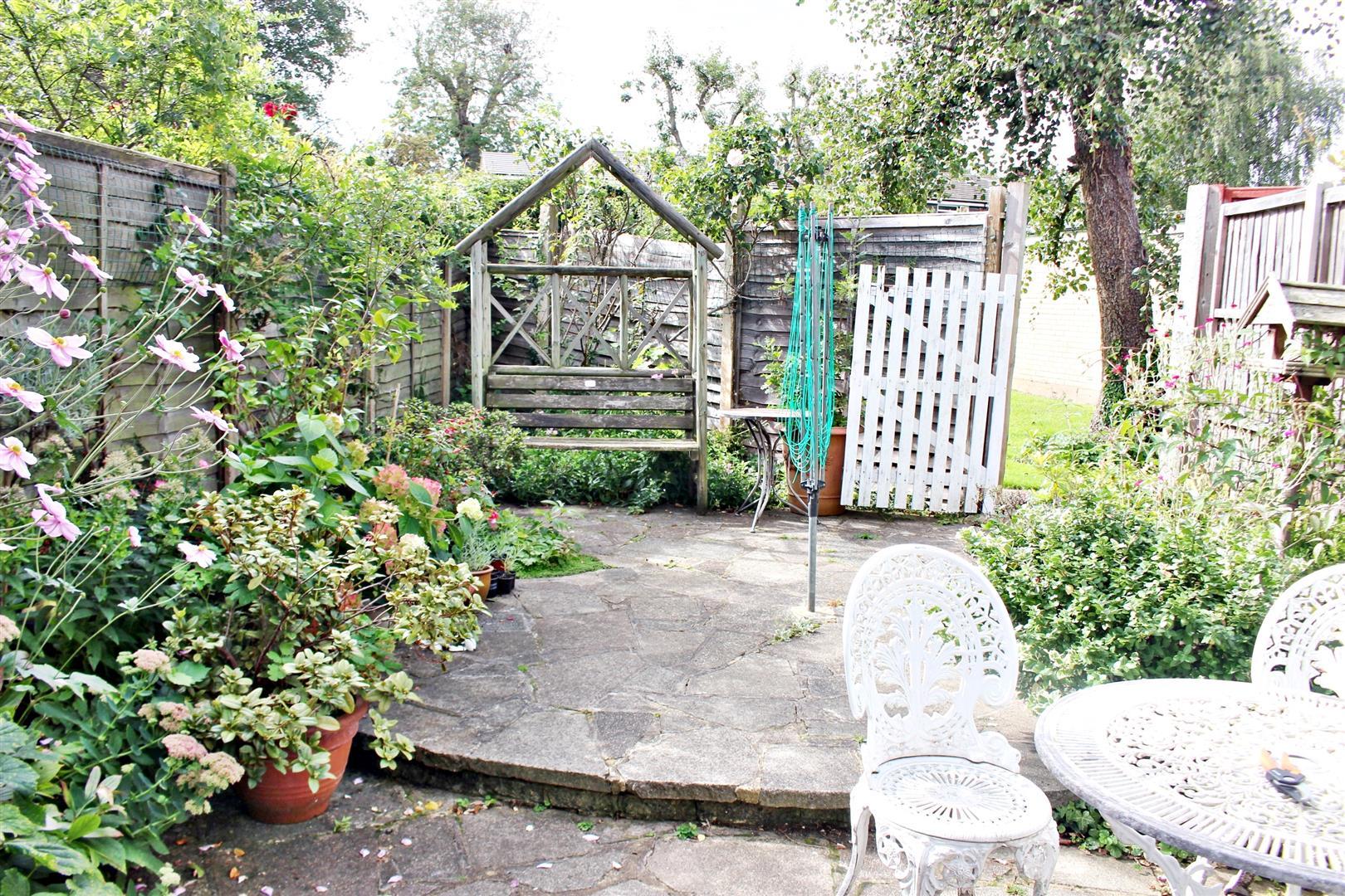 IMG_3334  Garden.JPG